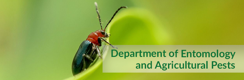 Department of Entomology and Agricultural Pests