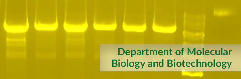 Department of Molecular Biology and Biotechnology